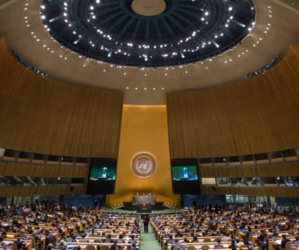 Third Committee of the United Nations General Assembly